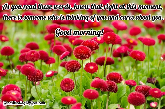 71 Good Morning Messages For Friends Loved Ones