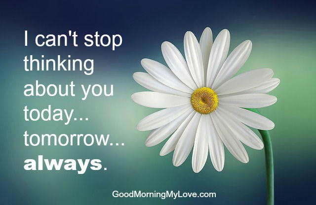Good morning love quotes hd images