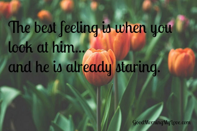 staring-love-quotes-for-him