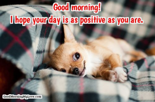 best good morning quotes and images