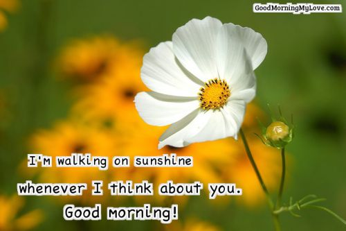 good morning love of my life quotes