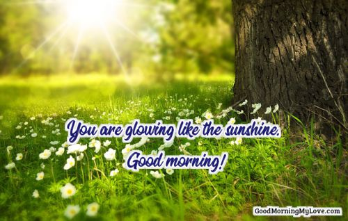 good morning quotes images for everyone