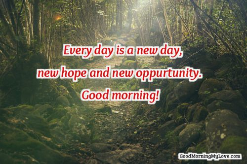 good morning quotes nature