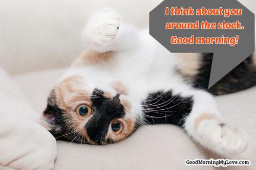 good morning quotes wake up sunshine