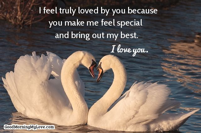 60 True Love Quotes Quotes About Finding True Love New Quotes About True Love